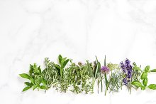 Fresh herbs Nature apothecary