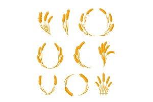 Set of Wheat Ears Vector