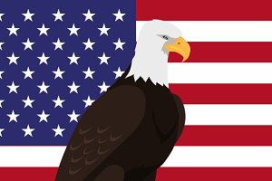 Bald Eagle Flat Design