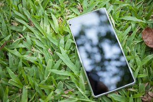 Phone reflected to the light on green grass