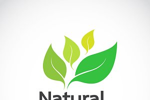 Natural logo design.