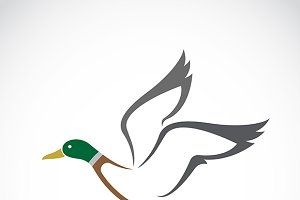 Flying wild duck design.