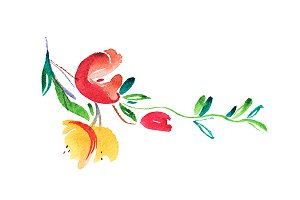watercolor drawing of flowers