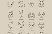 Head of dog and puppy set
