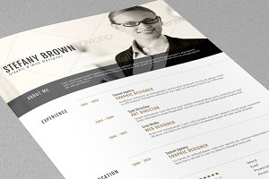 Clean Resume II