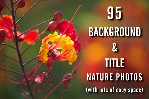 95 Background & Title Nature Photos
