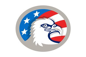 Bald Eagle Head USA Flag Oval Retro