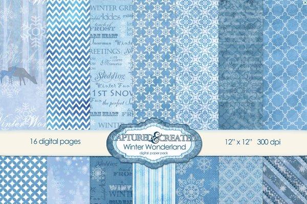 Winter Wonderland: Digital Paper-16