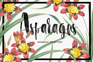 Asparagus - whimsical brush font