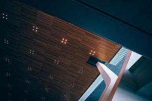 Transfigured Ceiling