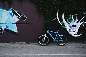 Bicycle and Street Art