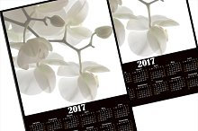 Calendar 2017 . The white Orchid.