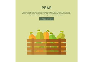 Pear Vector Web Banner