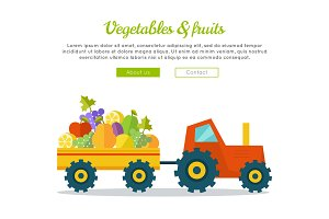 Vegetables & Fruits Concept