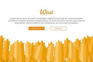 Wheat Ears Web Template