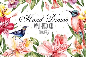 Hand Drawn Watercolor Flowers