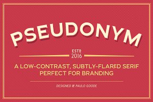 Pseudonym - 24 Incised Serif Fonts