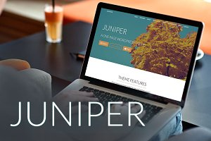 Juniper-WordPress Theme