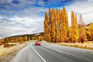 Autumn landscape, New Zealand