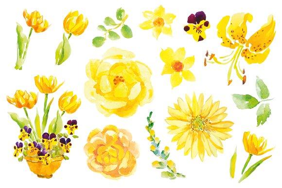 Yellow flowers clip art illustrations creative market mightylinksfo