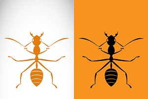 Vector image of a ant design