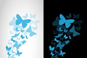 Vector image of an butterflies.