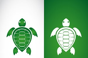 Vector image of a turtle design.