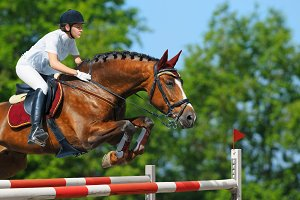 Woman jumping with bay horse