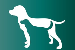Vector image of two dog. - Pet