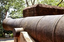 Antique cannons