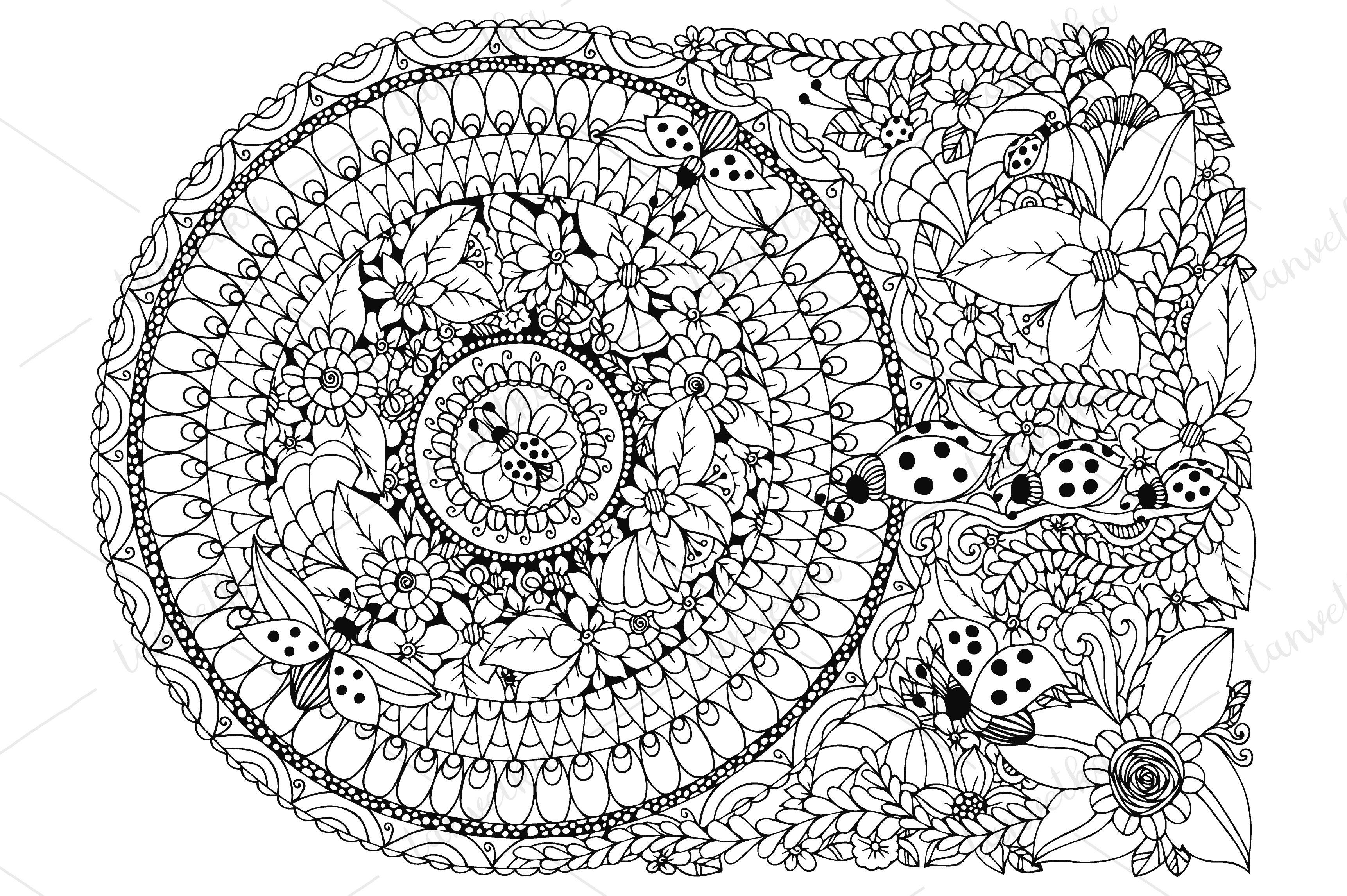 Doodle Mandala Ladybugs Flowers Illustrations Creative