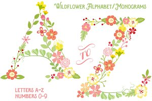 Wildflower Alphabet + Bonus Numbers