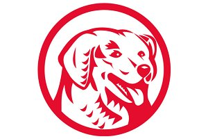 Kuvasz Dog Head Circle Retro