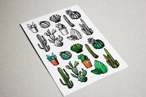 10 Hand Drawn Сactuses