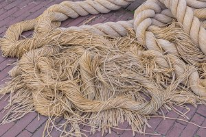 Segments of raw old rope