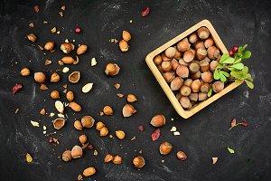 Hazelnuts in nutshell