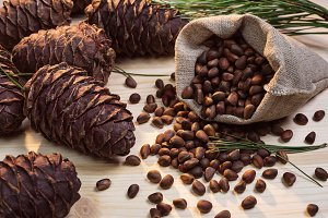 Nuts and cedar cones.
