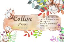 Cotton watercolor illustrations