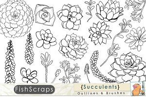 Succulent Outlines - Photoshop Brush