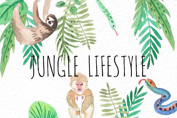 Jungle lifestyle.Watercolor set - Illustrations