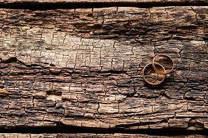 gold rings on a wooden background