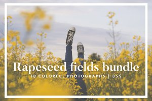 Rapeseed fields photo bundle
