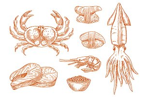 Seafood sketches set