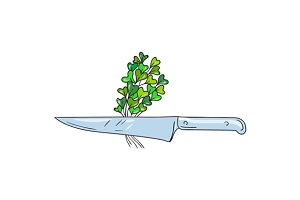 Knife Microgreen Drawing