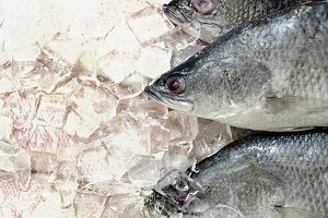Frozen fish in the market.
