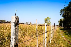 barbed wire fence blocking