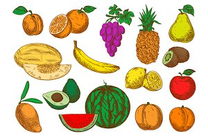 Colored sketched sweet fruits