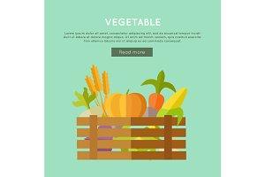 Vegetable Vector Web Banner