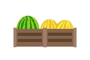 Melon Vector Illustration