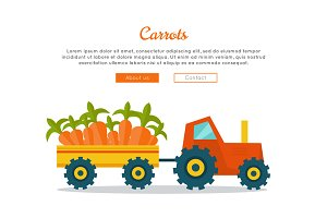 Carrot Farm Web Vector